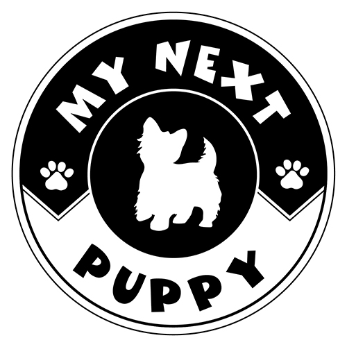 Buy Puppies & Pet Supplies - My Next Puppy Chantilly, Virginia